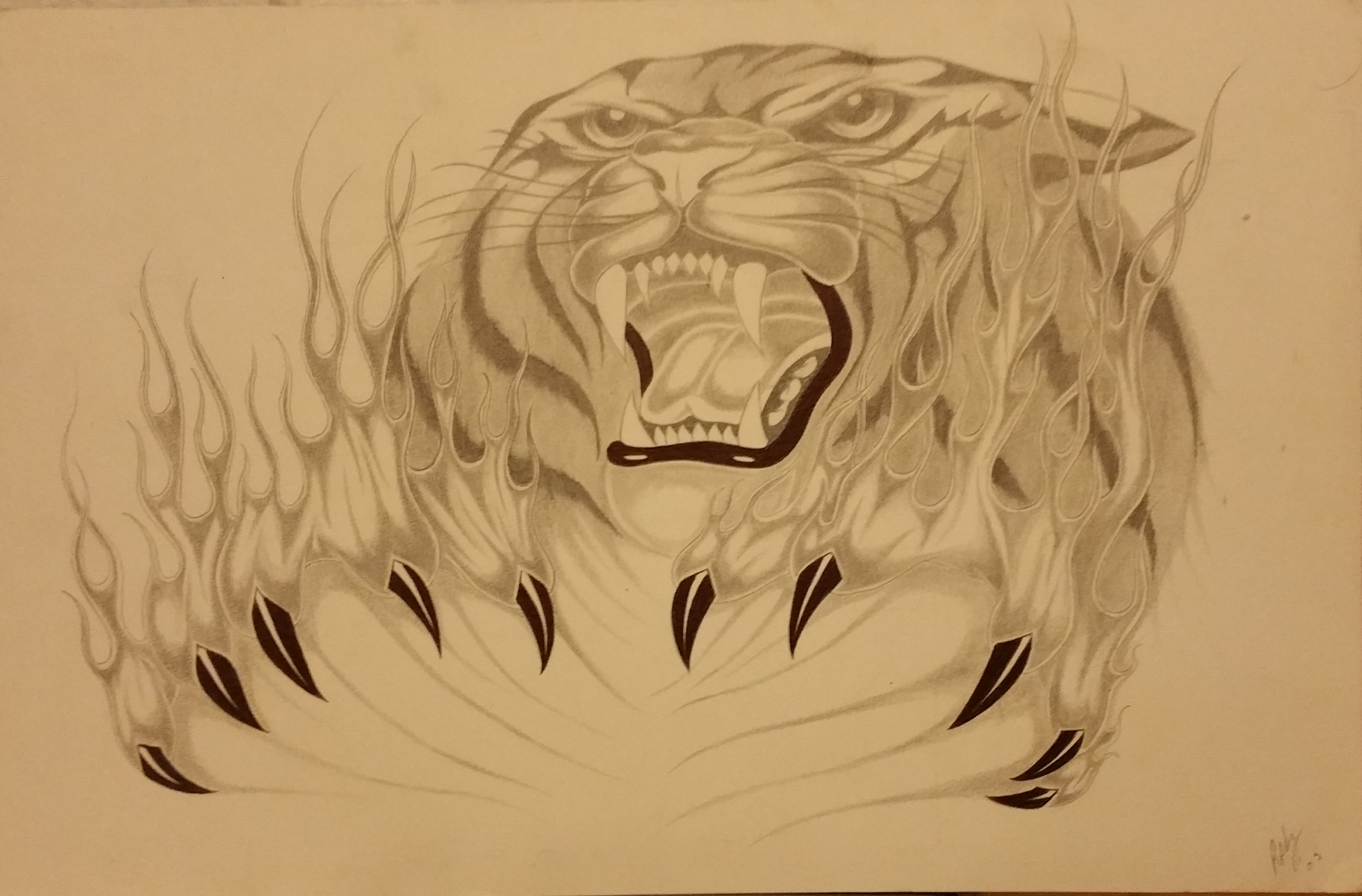 Tiger 4